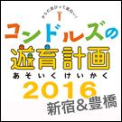 NHK×コンドルズ『コンドルズの遊育計画』